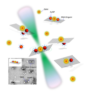 quantum dots and gold nanoparticles placed in different configurations on small rectangular constructs made of self-assembled DNA