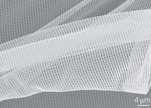 SEM image of a flexible 3D NIM membrane formed by release and subsequent deposition on a solid support.