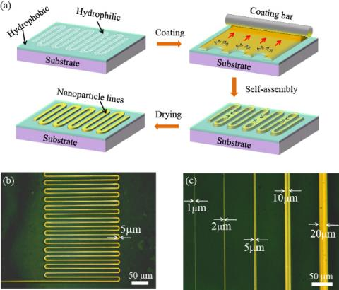 Formation of microcircuit lines using a selective coating technique. (a) Schematic of selective coating technique. Only a hydrophilic region created through irradiation of parallel vacuum ultraviolet (PVUV) is coated with metal ink. (b) Electronic circuit with a line width of 5 μm formed through selective coating. (c) Electrode lines with different widths. Lines as narrow as 1 μm can be formed.