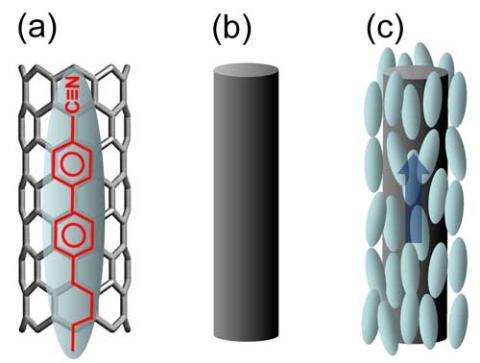 Schematic illustrations of LC-CNT interaction: (a) anchoring of an LC molecule on the CNT surface due to π-π electron stacking. The blue ellipsoid is an LC molecule and the black cylindrical honeycomb structure is a CNT surface. The molecular structure of 5CB LC is shown in red in the ellipsoid on the CNT surface. The π-π electron stacking is illustrated by matching the LC's benzene rings on the CNT-honeycomb structure; (b) a simplified version of a CNT; (c) a pseudonematic domain surrounding a CNT