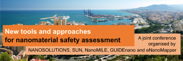 Nanomaterial Safety Assessment Conference